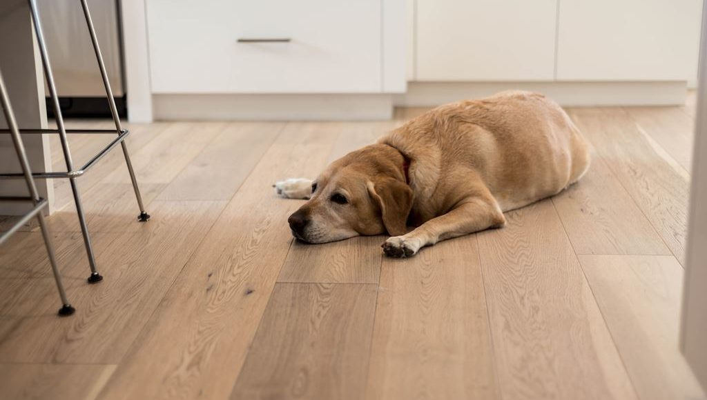 hardwood-Floor-Installers-near-me